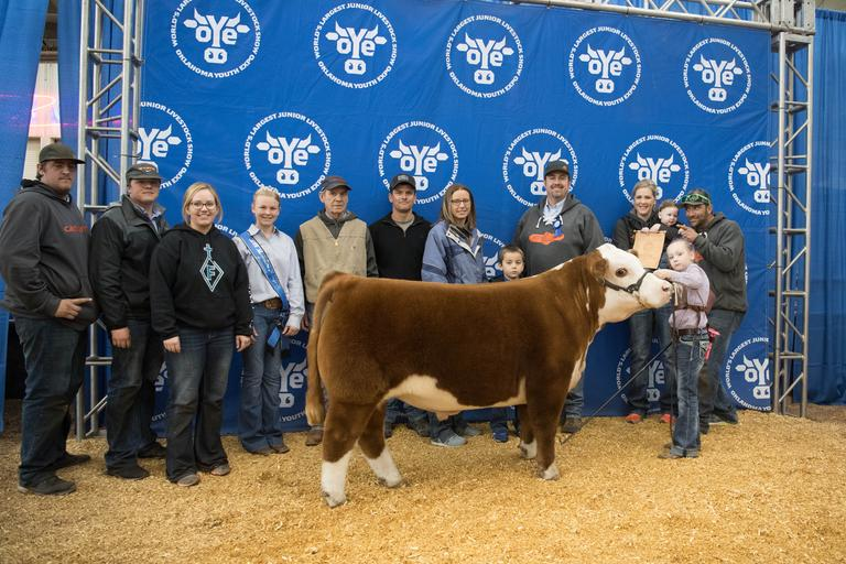 6E Farms / Stelzer Livestock - 6E MAJESTY 26A