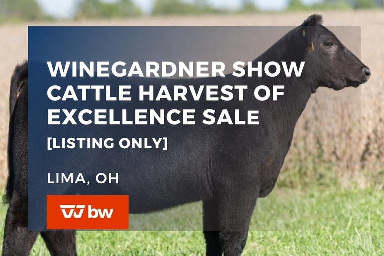 Winegardner Show Cattle Harvest of Excellence Sale - Listing Only - Ohio