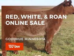 Red, White & Roan Online Sale - Minnesota