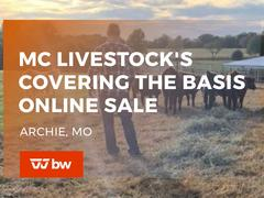 MC Livestock's Covering the Basis Online Sale - Missouri