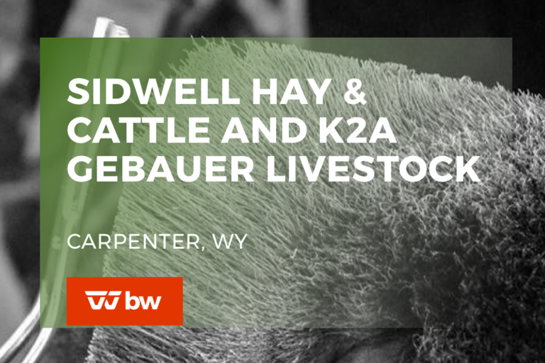 Sidwell Hay and Cattle and K2A Gebauer Livestock - Wyoming