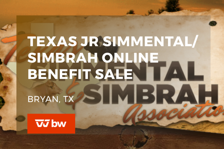 Texas Simmental/Simbrah Online Benefit Sale - Texas