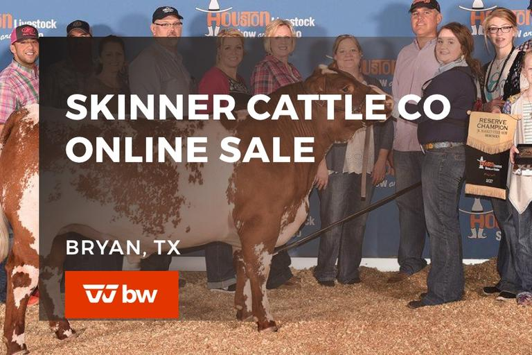 Skinner Cattle Co Online Sale - Texas
