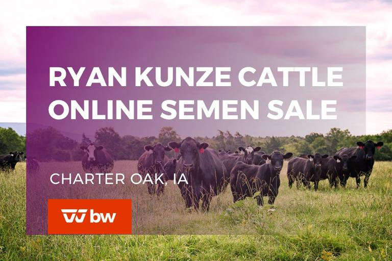 Ryan Kunze Cattle Online Semen Sale - Iowa