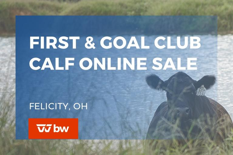 First and Goal Club Calf Online Sale - Ohio