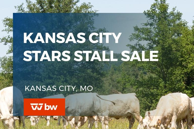 Kansas City Stars Stall Online Sale - Missouri