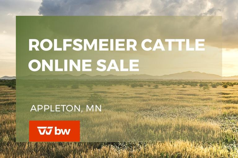 Rolfsmeier Cattle Online Sale - Minnesota