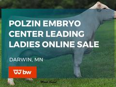 Polzin Embryo Center Leading Ladies Online Sale - Minnesota