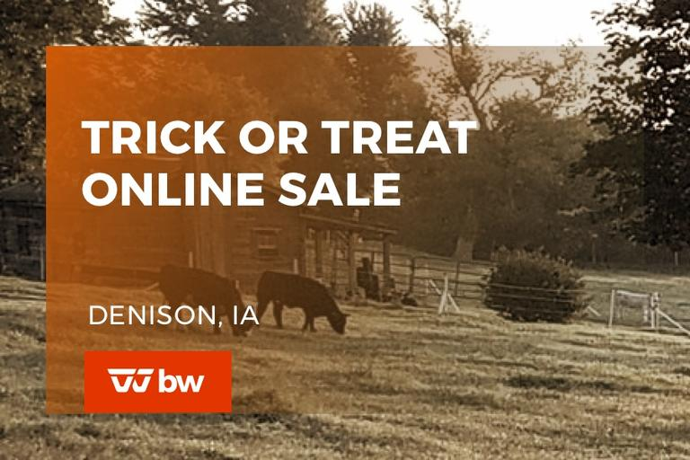 Trick or Treat Online Sale - Iowa