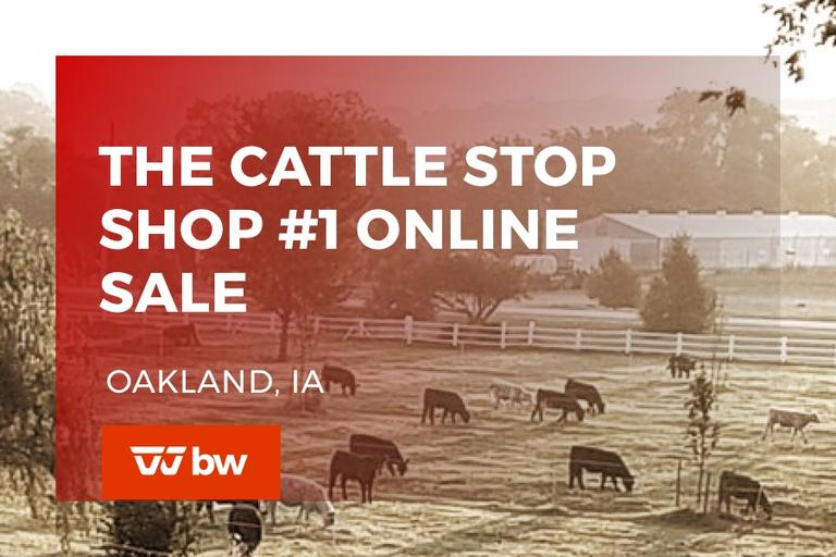 The Cattle Stop Sale #1 - Iowa