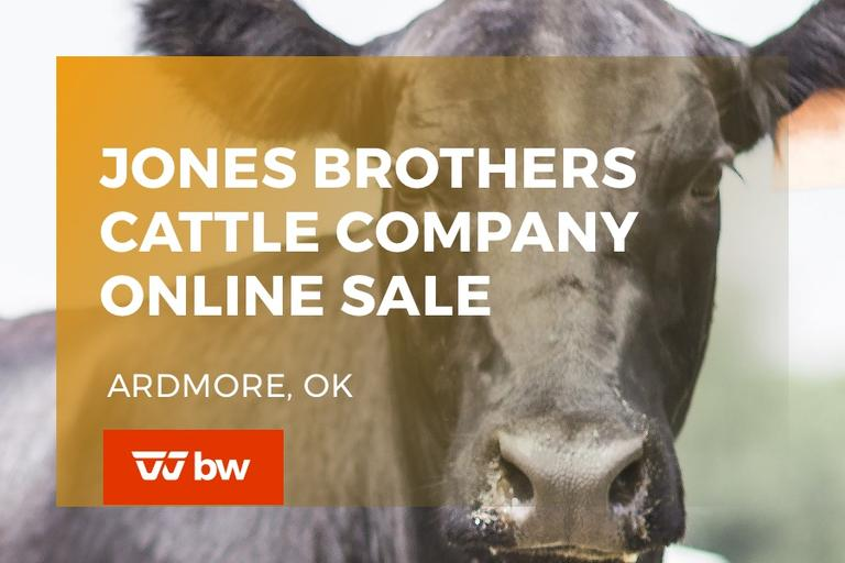 Jones Brothers Cattle Company Online Sale