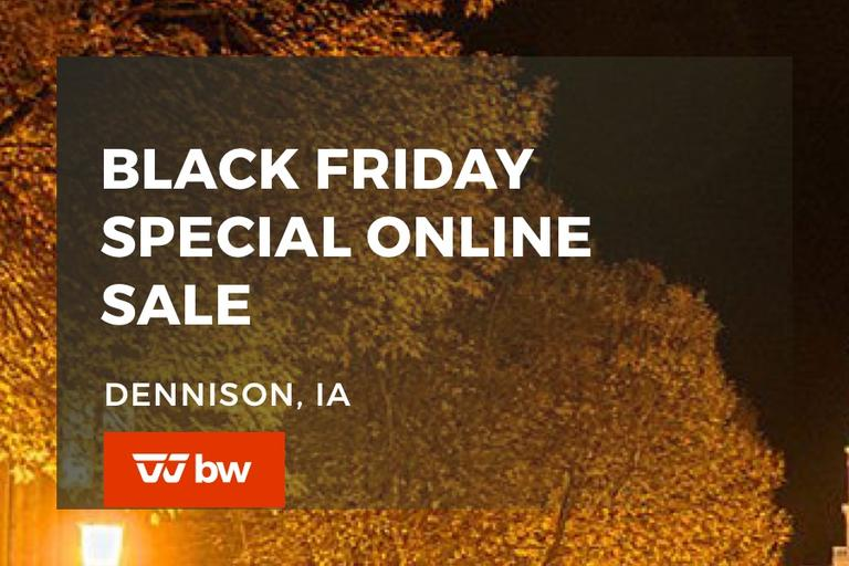 Black Friday Special Online Sale - Iowa