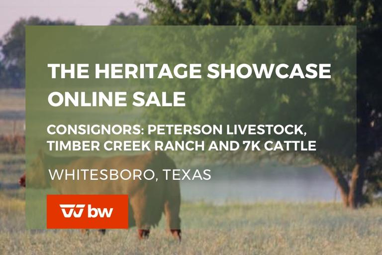 The Heritage Showcase Online Sale - Texas