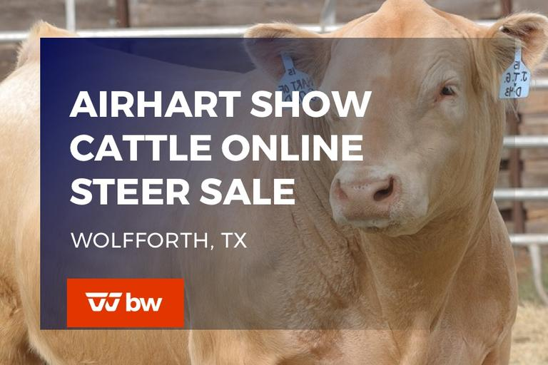 Airhart Show Cattle Online Steer Sale - Texas