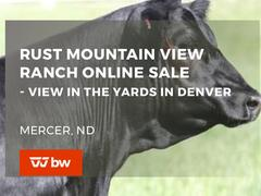 Rust Mountain View Ranch Online Sale - North Dakota