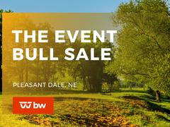 The Event Online Bull Sale - Nebraska