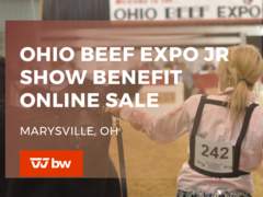 Ohio Beef Expo Jr Show Benefit Online Sale - Ohio
