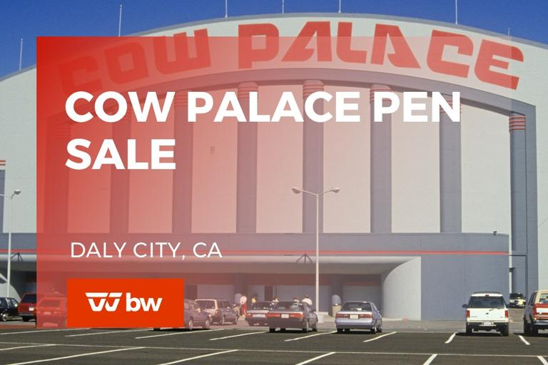 Cow Palace Pen & RV Auction