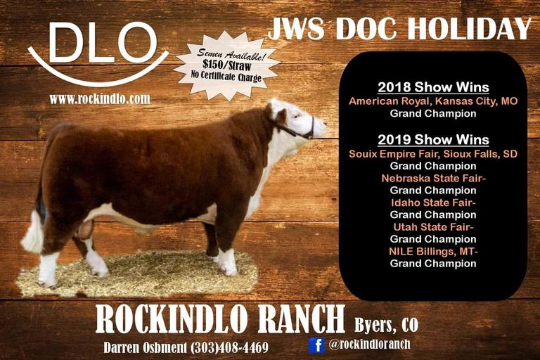 Rockindlo Ranch