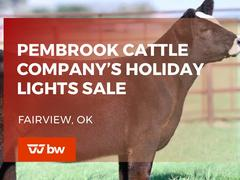 Pembrook Cattle Company's Holiday Lights Online Sale - Oklahoma