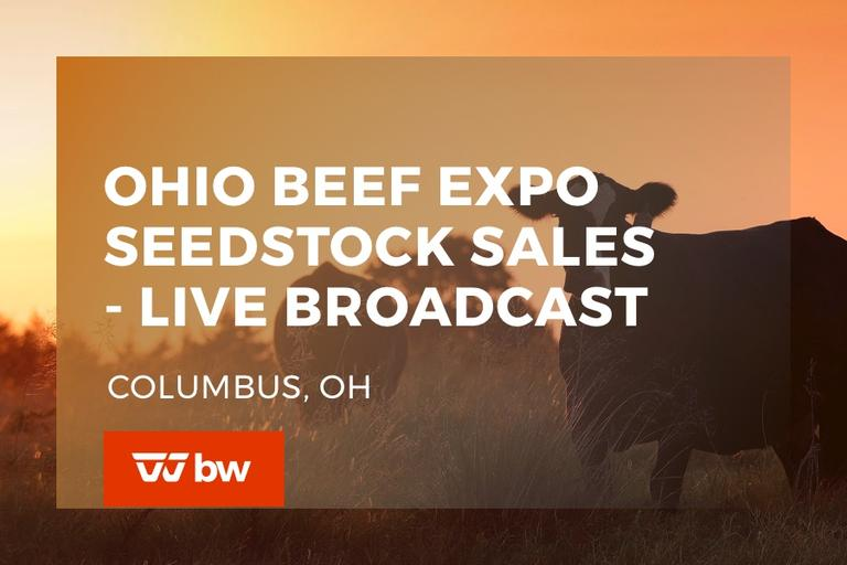 Ohio Beef Expo Seedstock Sales - Ohio
