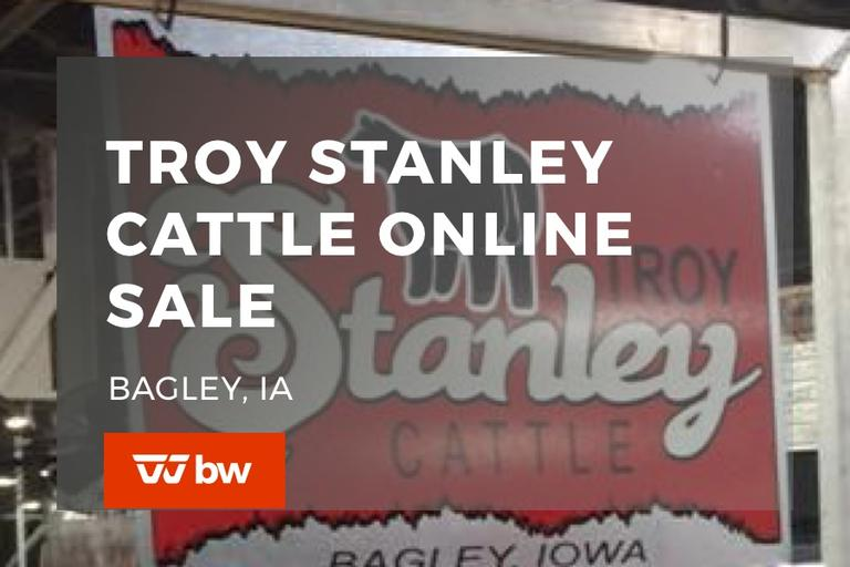 Troy Stanley Cattle Online Sale - Iowa
