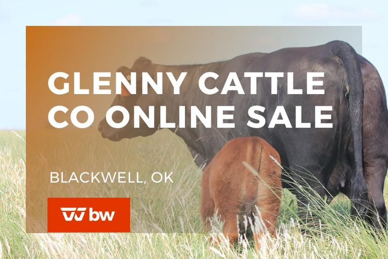 Glenny Cattle Co Online Sale - Oklahoma