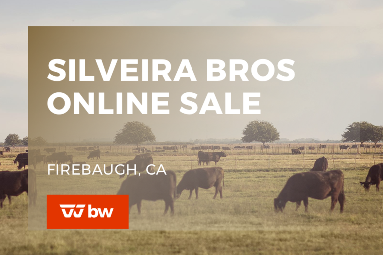 Silveira Bros Online Sale - California