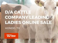 D/A Cattle Company Leading Ladies Online Sale - Texas