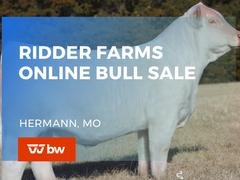 Ridder Farms Online Bull Sale - Missouri