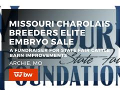 Missouri Charolais Breeders Elite Embryo Sale - A Fundraiser for State Fair Cattle Barn Improvements - Missouri