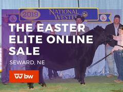 The Easter Elite Online Sale - Nebraska
