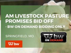 AM Livestock Pasture Promises Bid Off - BW ON DEMAND BIDDING/VIEW ONLY - Missouri