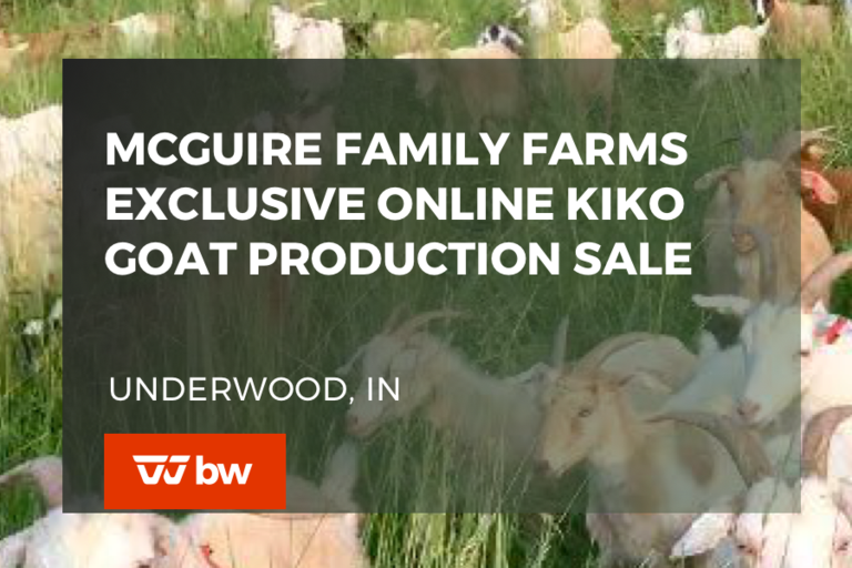 McGuire Family Farms Exclusive Online Kiko Goat Production Sale - Indiana