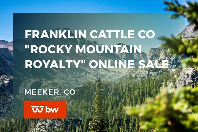 "Franklin Cattle Co ""Rocky Mountain Royalty"" Online Sale - Colorado"