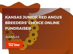 Kansas Junior Red Angus Breeders' Choice Online Fundraiser - Kansas