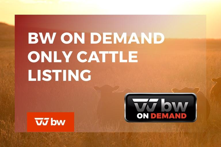 BW On Demand Only Cattle Listing