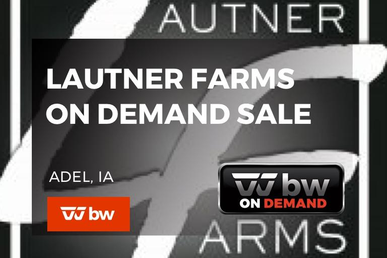 Lautner Farms On Demand Semen Sale - Iowa