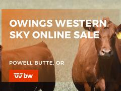 Owings Western Sky Online Sale - Oregon