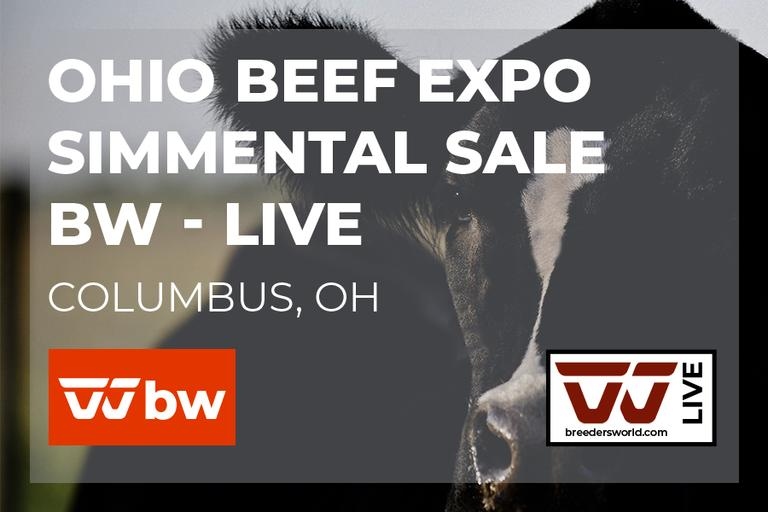 Ohio Beef Expo Simmental Sale - BW Live