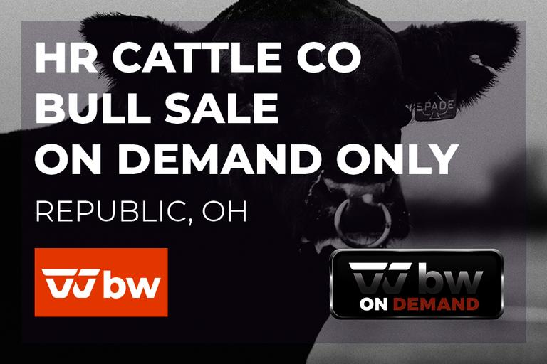 HR Cattle Co On Demand Bull Sale - Ohio