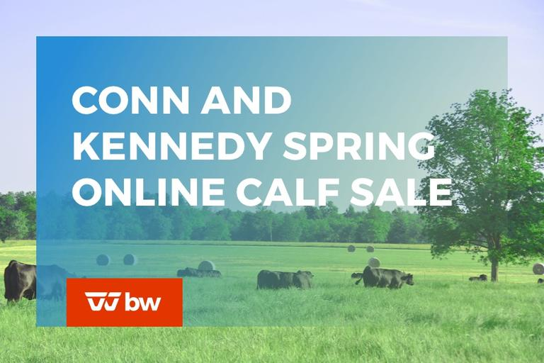 Conn and Kennedy Spring Online Calf Sale - Ohio