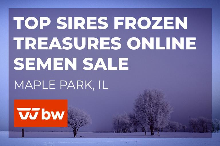 Top Sires Frozen Treasures Online Semen Sale - Wisconsin