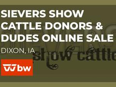 Sievers Show Cattle Donors & Dudes Online Sale - Iowa