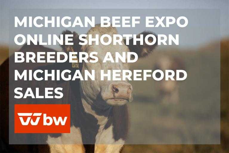 Michigan Beef Expo Online Shorthorn Breeders and Michigan Hereford Female Sales