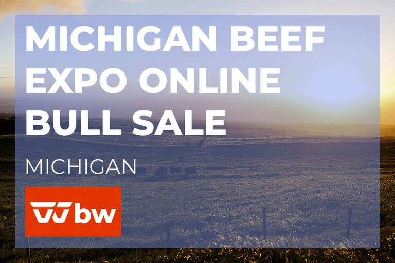 Michigan Beef Expo All Breeds Online Bull Sale
