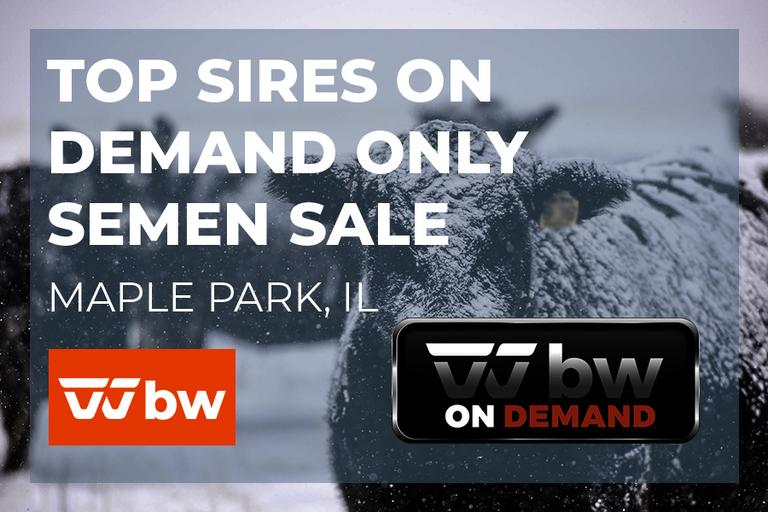 Top Sires On Demand Only Semen Sale - Illinois