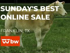 Sunday's Best Online Sale  - Texas