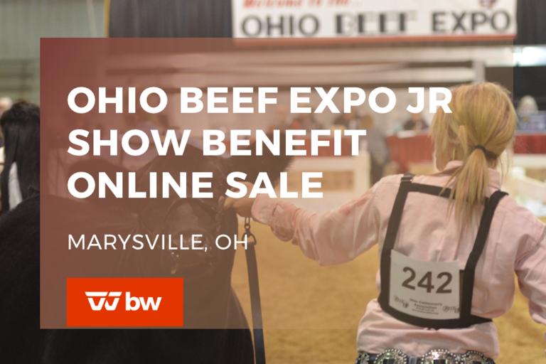 Ohio Beef Expo Jr Show Benefit Online Sale