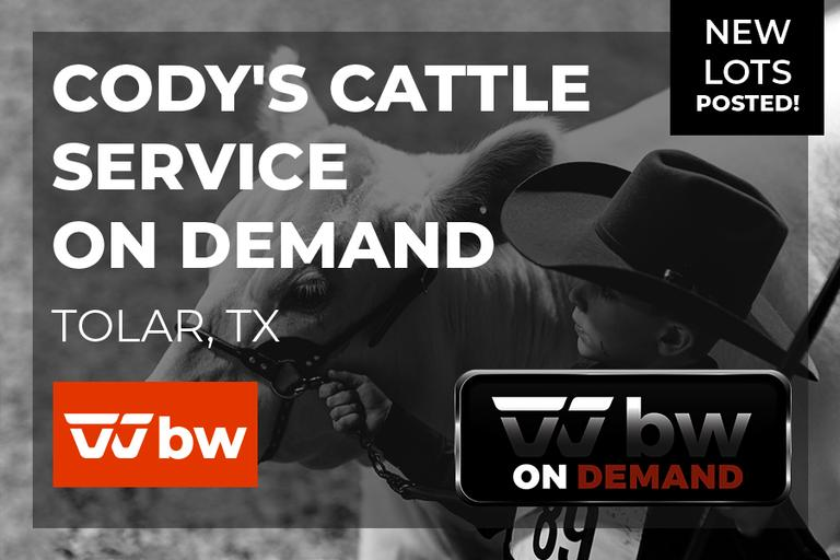 Cody's Cattle Service On Demand